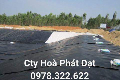 Báo giá bán lẻ màng bạt nhựa chống thấm HDPE màu xanh đen lót ao hồ bờ ao chứa nước giá rẻ tại Cần Thơ
