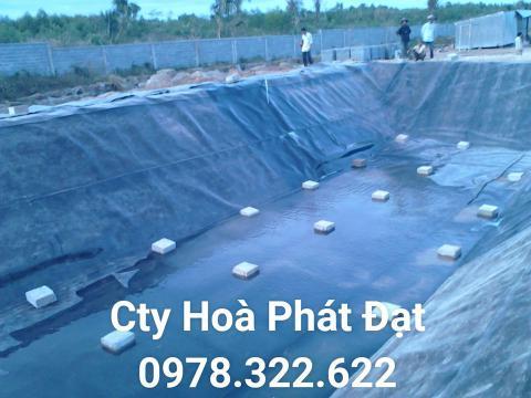 Báo giá bán lẻ màng bạt nhựa chống thấm HDPE màu xanh đen lót ao hồ bờ ao chứa nước giá rẻ tại Phú Quốc