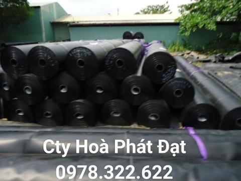 Báo giá bán lẻ màng bạt nhựa chống thấm HDPE màu xanh đen lót ao hồ bờ ao chứa nước giá rẻ tại Nha Trang Khánh Hoà