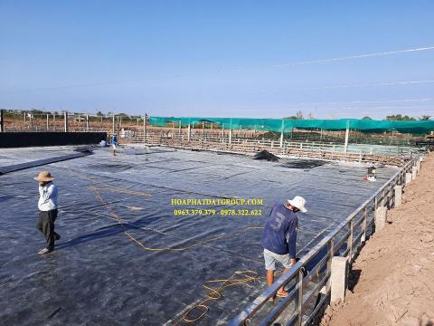 Báo giá bán lẻ màng bạt nhựa chống thấm HDPE màu xanh đen lót ao hồ bờ ao chứa nước giá rẻ tại Trà Vinh